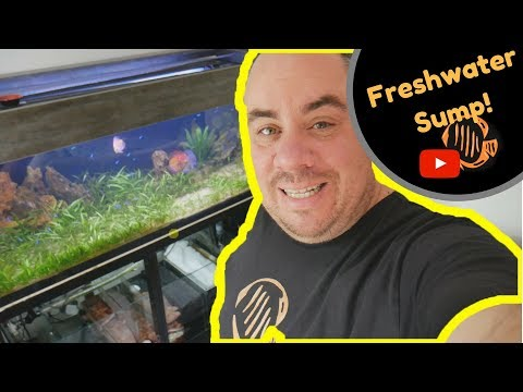 Freshwater sump filter - setup and troubleshooting