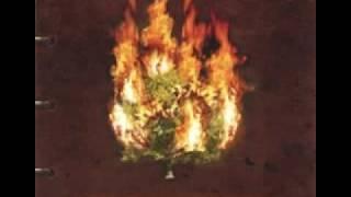 """""""Hootie Hoo"""" By The Burnin Bush"""