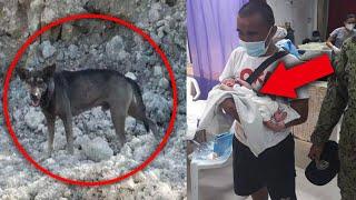 Пёс спас брошенного новорожденного ребёнка!
