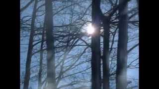 Диана Арбенина - Брамс (Мальчик на шаре, 2014) неофициальное видео(Онегин (1999г) Режиссер: Марта Файнс., 2014-08-12T21:52:34.000Z)