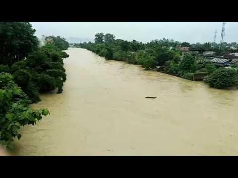 Dimapur: Dhansiri River overflow at Purana Bazar &' Naharbari area