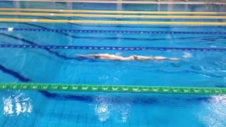 Уроки плавания от школы плавания Север