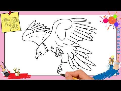 Full download dessin pigeon facile comment dessiner un - Comment dessiner un aigle royal ...