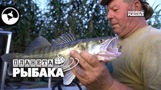 Судак на тюкалку. Рыбалка в Астрахани | Планета рыбака