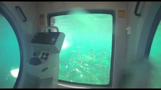 EGO semi submarine Thumbnail