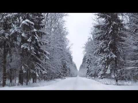 Зимний лес, дорога в снегу, красивая природа зима, засыпало снегом зимняя дорога музыка