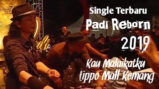 Padi Reborn - Kau Malaikatku (konser Di Lippo Mall Kemang)