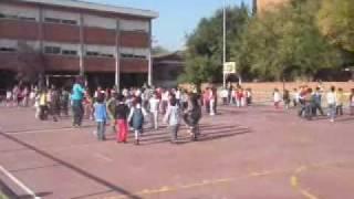 LA CASTANYERA 2009