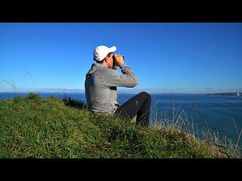 НОВАЯ ЗЕЛАНДИЯ. МИСТИЧЕСКИЙ ПОХОД Ч.2 | Влог # 40 | Жизнь в Новой Зеландии