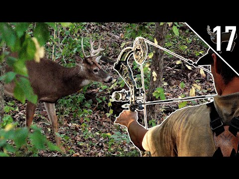 BUCKS IN DAYLIGHT!!! – (Bowhunting the OCTOBER Lull)