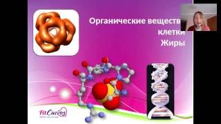 Органические вещества клетки. Жиры