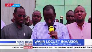 Leaders in Wajir call out on Government over locust invasion while pushing for lasting solutions