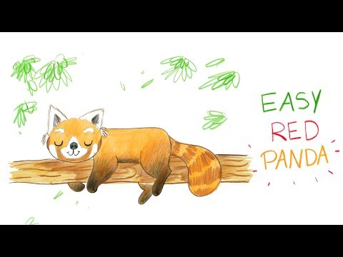 How To Draw A Cute Red Panda Easy Way Comment Dessiner