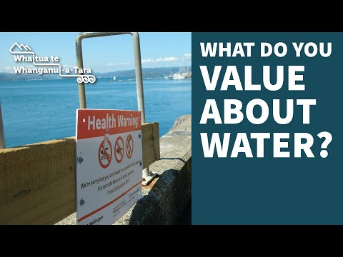 Have your say on water in the Whanganui-a-Tara Whaitua