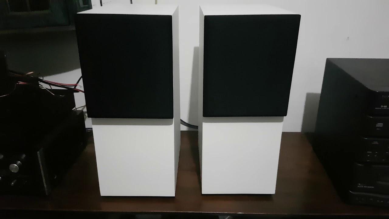Custom Infinity RS - A63 series II transmission line speaker