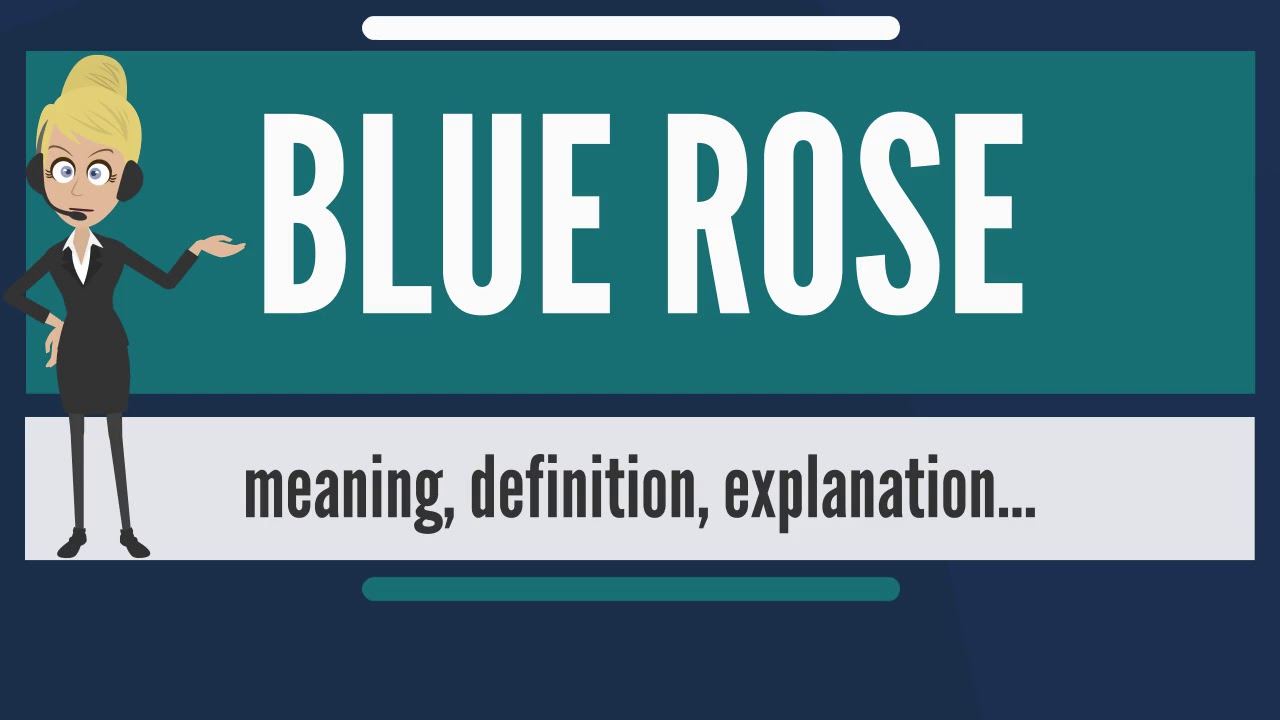 What is blue rose what does blue rose mean blue rose meaning what does blue rose mean blue rose meaning definition explanation buycottarizona