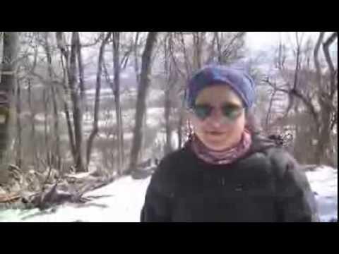 Travel Summary from Pennsylvania