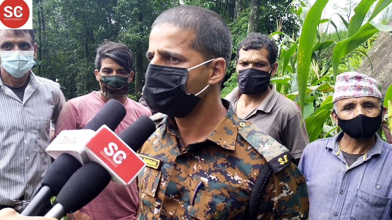 #sikkimchronicle #scnews  पूर्व सिक्किम तूमिन शेले गाउँमा भालू निक्लेर गाउँलाई खतरा