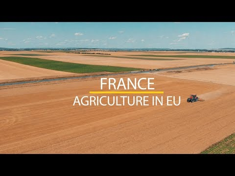 Agriculture in European Union. France. Aerial drone view in 4K