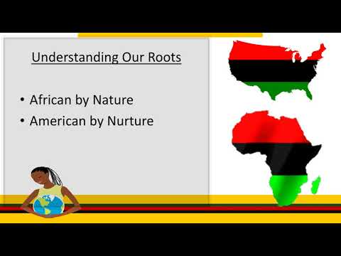 Mini-lecture: Introduction To African American Studies