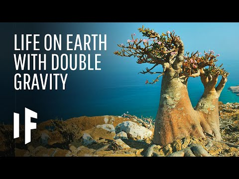 What If Earth's Gravity Was Stronger?