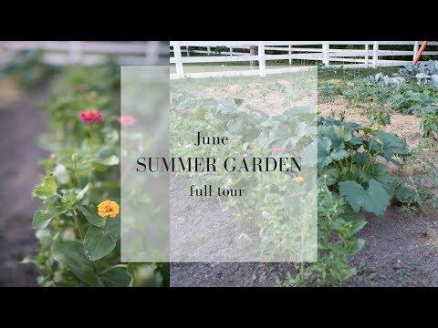 June Garden Tour| SUMMER VEGETABLE GARDEN