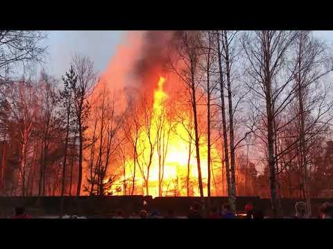 Сильный пожар во Всеволожске.