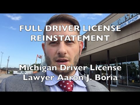 Michigan Driver License Reinstated