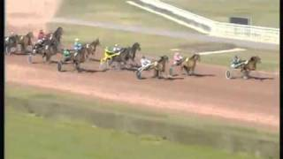 PMU , french horse racing results Theme 1 ( TF1 / 2007 )