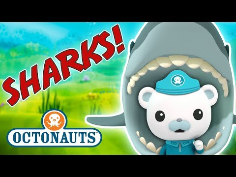 Octonauts - Learn about Sharks   Cartoons for Kids   Underwater Sea Education
