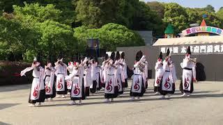 太宰府まほろば衆 壬帝(新曲) 太宰府門前真舞祭 2018.04.15(日)