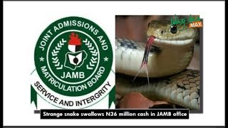 STRANGE SNAKE SWALLOWS 36 MILLION NAIRA IN JAMB OFFICE