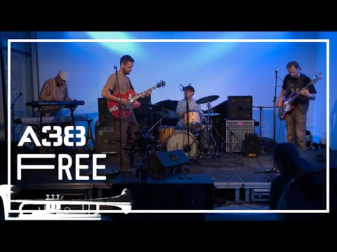 Ethno Darwin - Stenk // Live 2014 // A38 Free