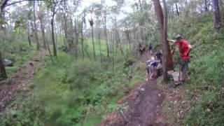 Building a Retaining Wall on the Wallum Froglet Trail Cornubia