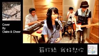 蘇打綠 我好想你「小時代」電影主題曲 Cover By【倆倆 Claire & Cheer】fromTaiwan HD (附譜+kala)