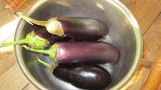 Баклажаны запеченные на углях в мангале / Вкусные как мясо!