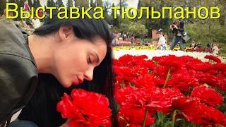 видео Выставка Крым. Стройиндустрия. Энергосбережение