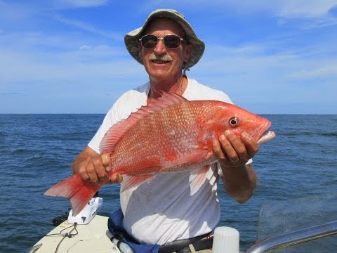 Green Seas Red Snapper