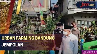 Wapres Puji Pembangunan Agrowisata Urban Farming Bandung - JPNN.com