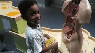 CHILDREN'S MUSEUM AND SCIENCE FUN  Children Activities and Family Fun Kids Indoor Play Area
