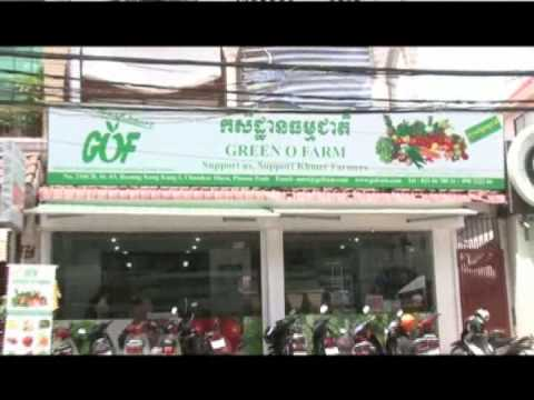 Apsara TV presents Organic Moringa  Baca Villa Cambodia