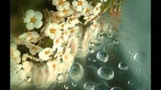 Tania Libertad -  Alfonsina y el mar