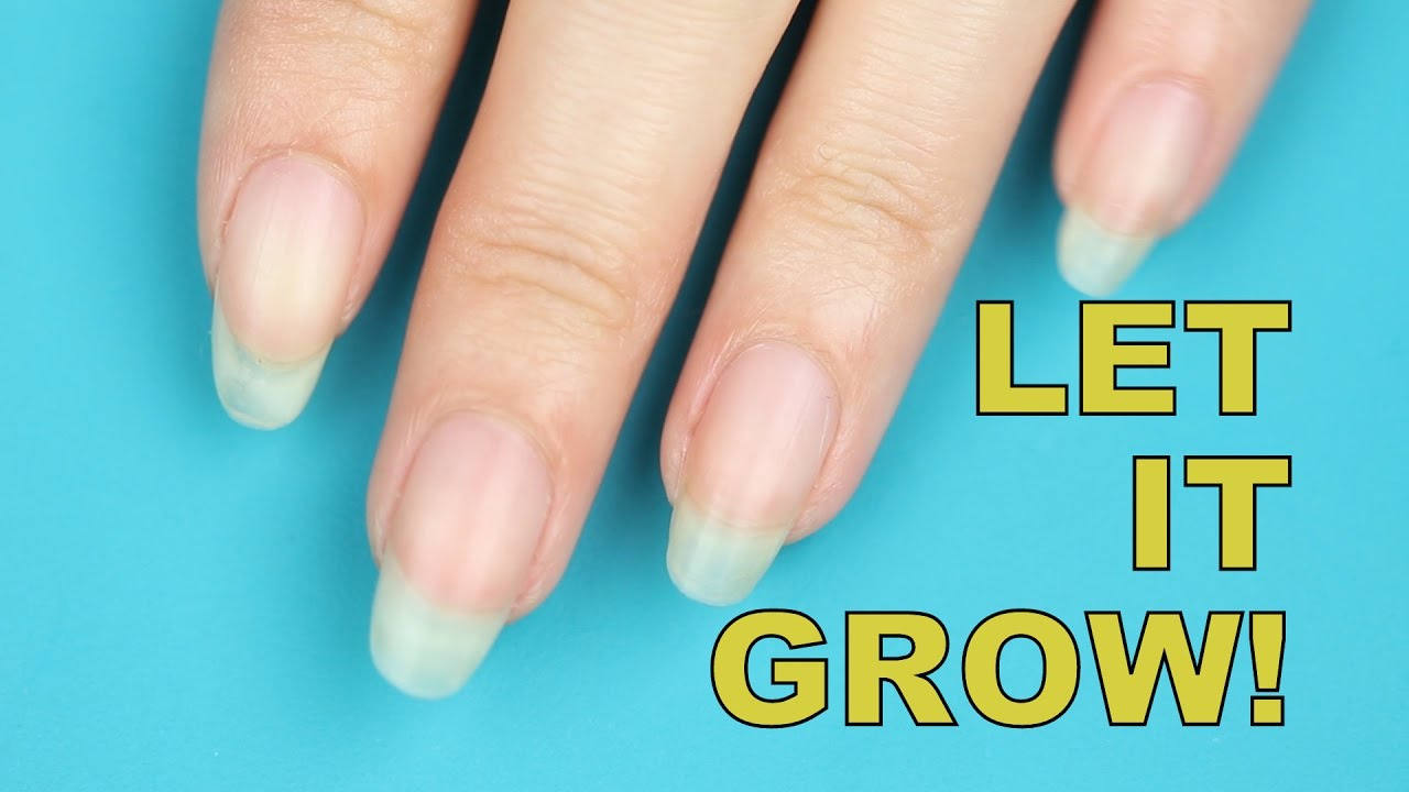 MY LONGEST NAILS EVER + CRAZY SIMPLE NAIL GROWING TIPS - YouTube
