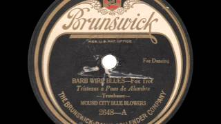 Mound City Blue Blowers - Barb Wire Blues - 1924