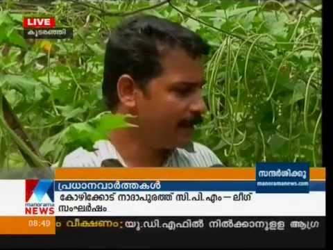 In around 1 terrace farming in kerala urban farming for Terrace krishi