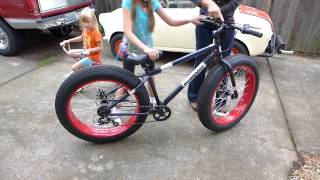 Everyone Wants To Ride My New Fat Bike