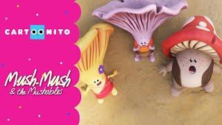 Flipi und die Pilzlinge | Rettet den Spielbaum! (Ganze Folge) | Boomerang