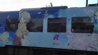 のと鉄の花咲くいろはのラッピング電車です!