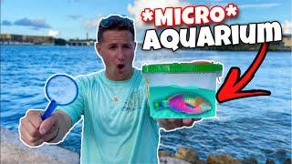 DIY Dollar Store MICRO Aquariu…