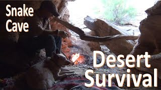The Rattlesnake Cave -Desert Survival- Catch and Cook
